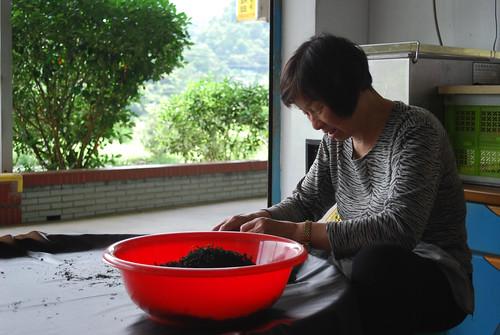 Mme Fu qui exécute le triage manuel du Pinglin Bao Zhong