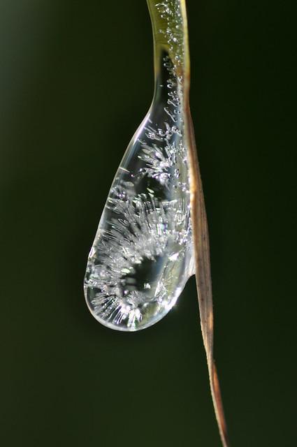 ijsdruppel