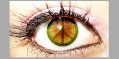 iris, vision care, brown, eyelash, eyelash extensions, close-up, eye, organ,