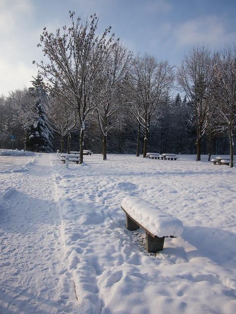 Schnee 12/2012