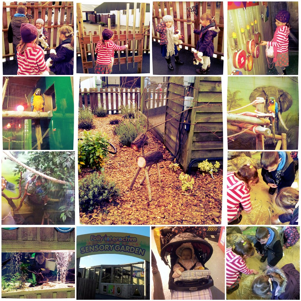 Sensory Garden and Pet