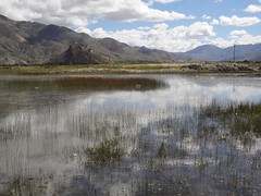 Visitar o Tibete Roteiro 8 dias