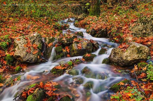 travel autumn nature water colors river landscape nikon greece trikala thessaly nikond7000 georgepapapostolou