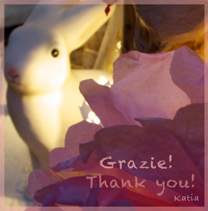 Grazie a i miei lettori e amici