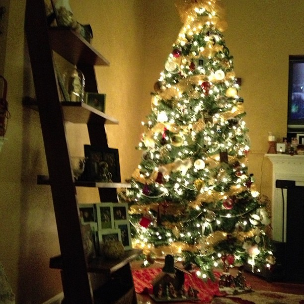 "Sitting in front of the in-laws pretty tree. We just finished watching ""Christmas Vacation"". =)"