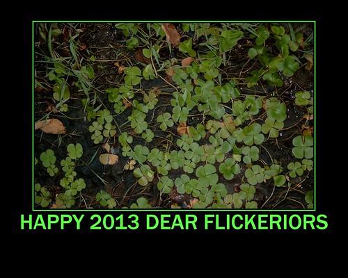 Happy 2013 dear Flickeriors by Ginas Pics