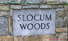 slocum woods sign north kingstown real estate
