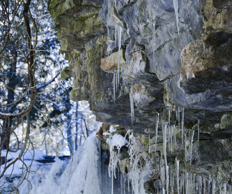 Hilton Falls Conservation Area in Winter