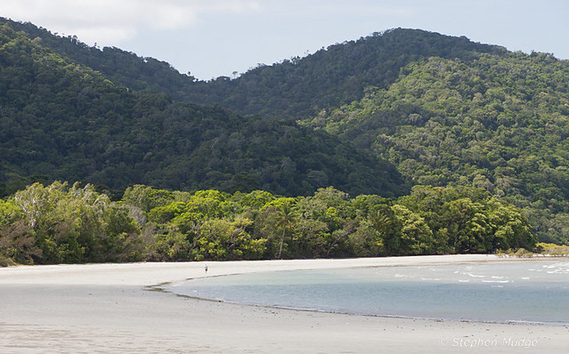 Cape Tribulation #2