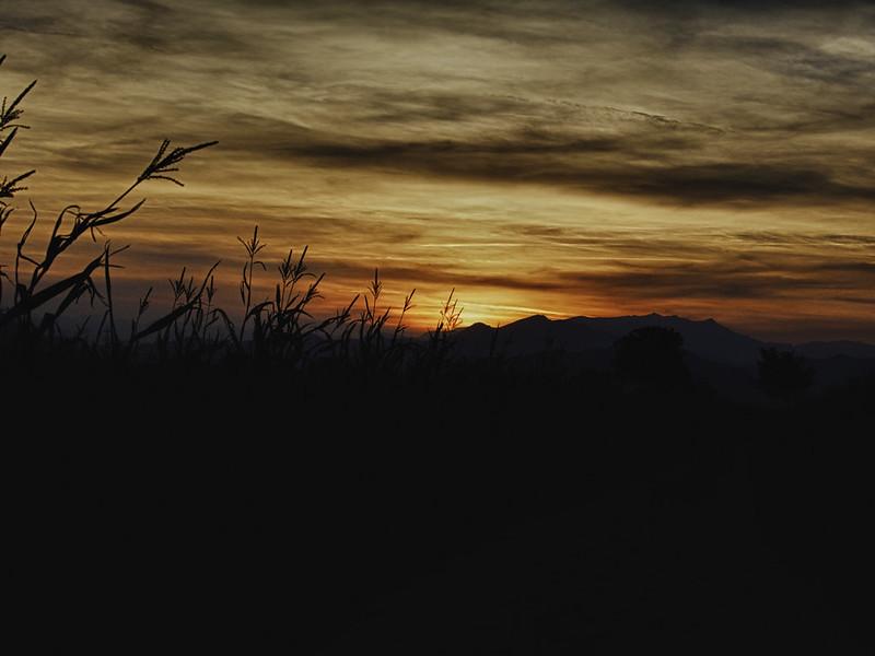 Sunset #20