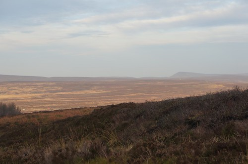 Looking Northeast across Snilesworth Moor from below Black Hambleton, North York Moors
