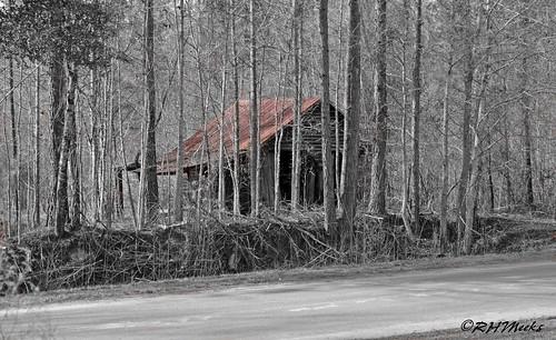 countryside nikon rust selectivecolor d5100 montgomerycountyga