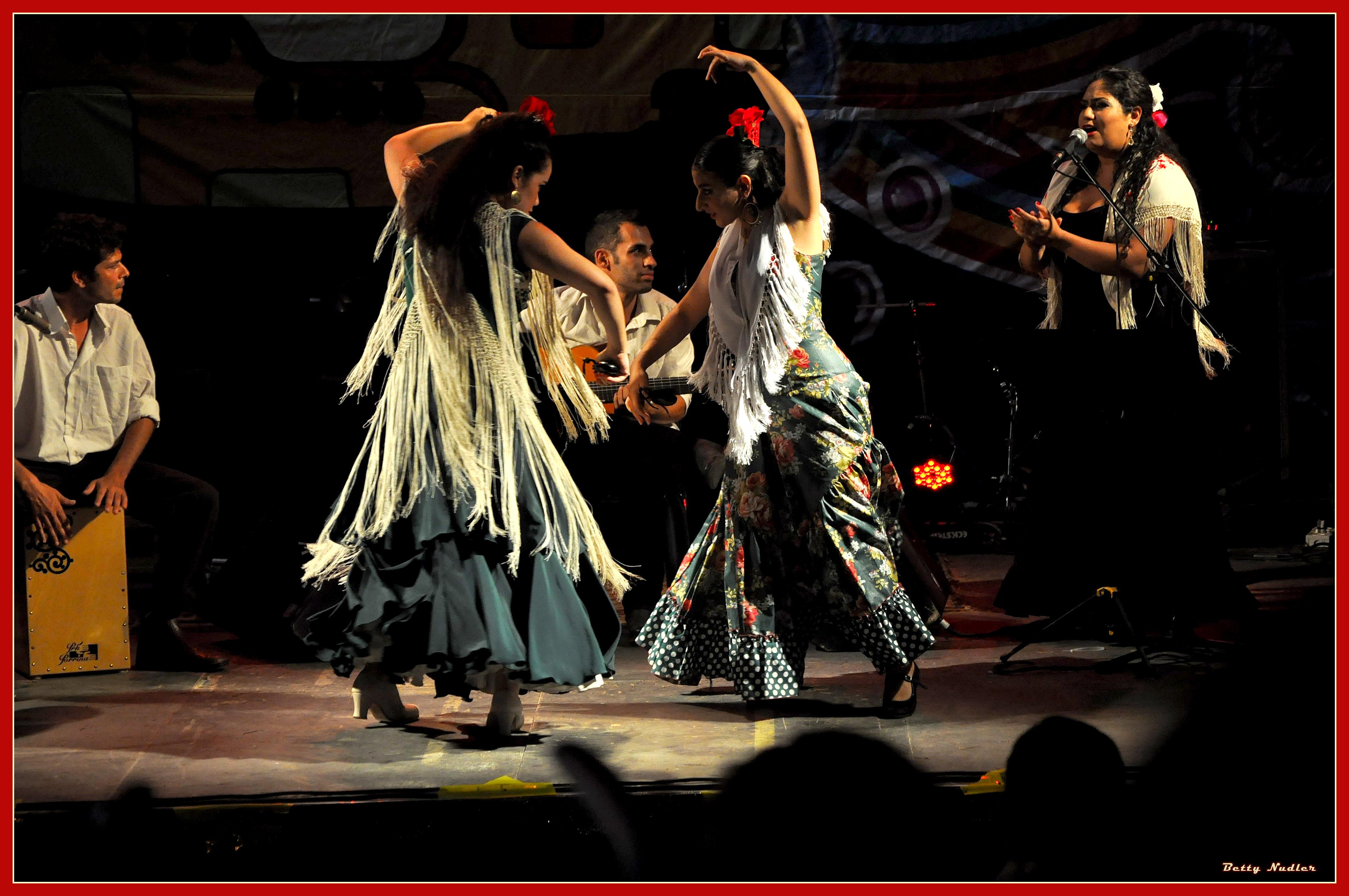 houtsot ayotser -flamenco