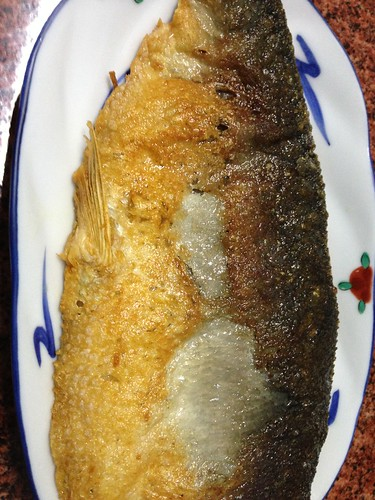 fried milk fish