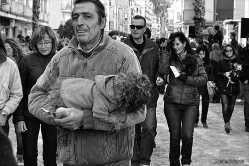 Sant antoni by ADRIANGV2009