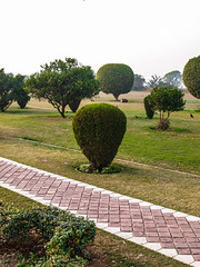 Indien2010_Lotustempel_(20101207)_13