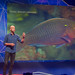 TEDx Arendal 2016: Even Moland