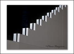 MOMA #NY