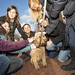 20121208_mac_dogdays_319