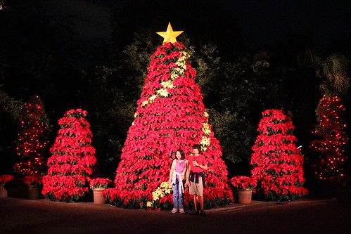 First Ever 39 Christmas Town 39 Shines At Busch Gardens Tampa With Santa 39 S House And Snow World