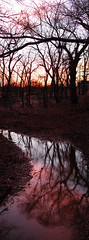 Reflections of sunset