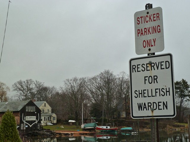 shellfish warden