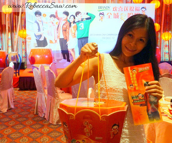 2013 Chinese New Year Hampers - BRAND'S-003