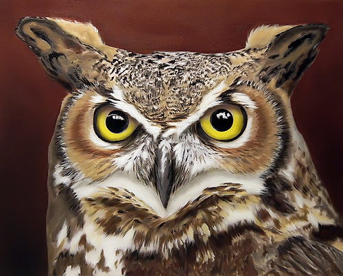 Great Horned Owl, acrylic painting by Craig Schultz