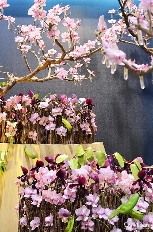 2012爭艷館花卉展01.jpg