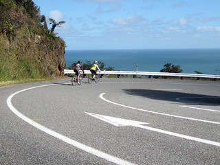 Punakaiki to Westport