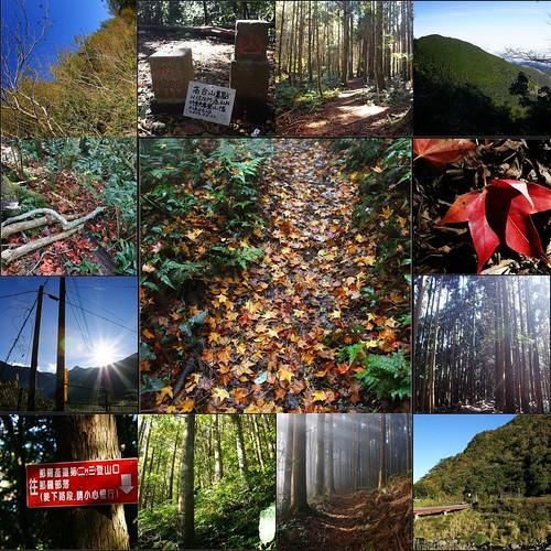 2012-1-8 samshiue 高台山