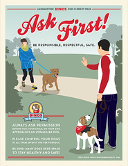 Dogs In Need Of Space
