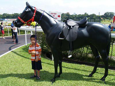 20121201_horseshowjulian
