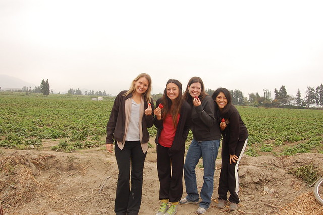 Strawberry Field en Route to Caral!