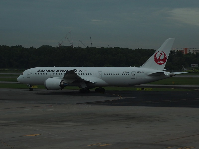 JAL B787 Dream Liner at Changi AP