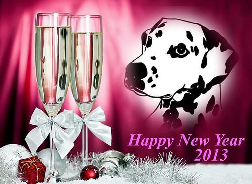 Happy New Year 2013! by Dalmatiner vom Hossenhaus