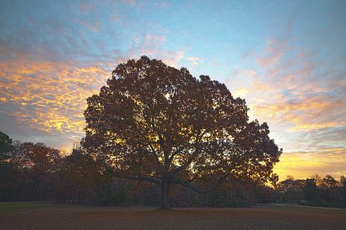 sunrise shiloh shilohnationalmilitarypark shilohtennessee shilohsunrise