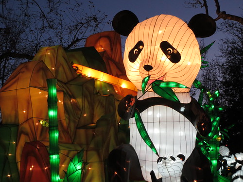 Panda Bear Night Display