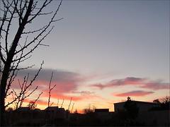 Sunrise 1/4/13