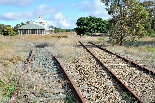 Closed Rankins Springs branch at Tallimba with the silo loop heading off to the left.