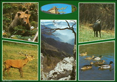 Slovenia Dolenjska