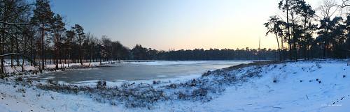 trees winter sunset sky panorama lake snow cold holland tree netherlands evening frozen meer bevroren sneeuw den silhouettes pim half gradient van breda heuvel mastbos kogelvanger pimvdh
