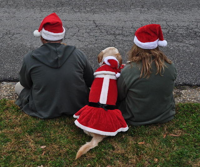 Smithfield Christmas Parade 2012 (11)