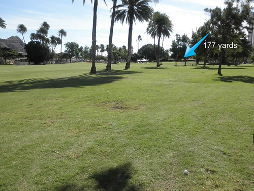 Ala Wai Golf Course 049b
