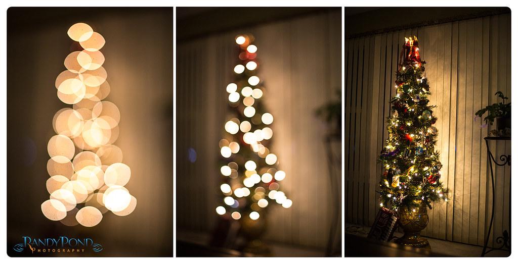 ~ December 2012 ~