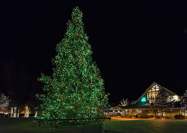 Freeport Christmas Lights 2020 Freeport Maine Christmas 2020 End Of The World | Hzfnmd