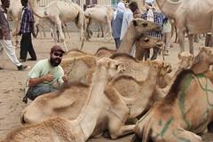 Camel Market (48)