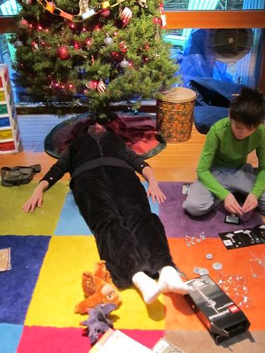 Christmas, xmas, tree IMG_2205