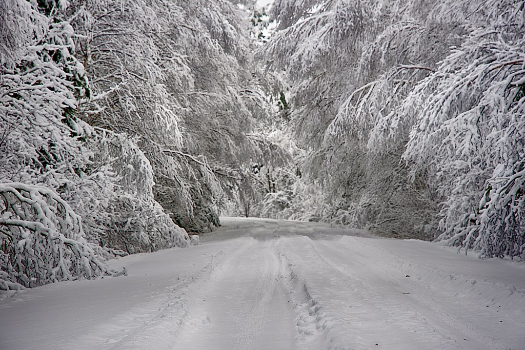 snow covered country road near Lake Vermillion, Minnesota
