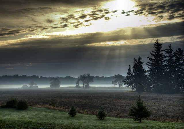 Sun rays over a foggy field, Ontario